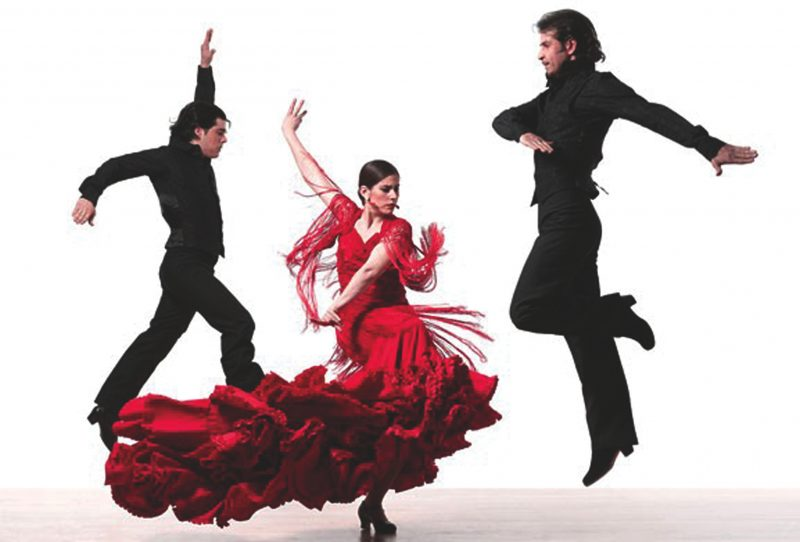 cours particuliers de flamenco dance 800x542 - Cours particuliers de danse Flamenco